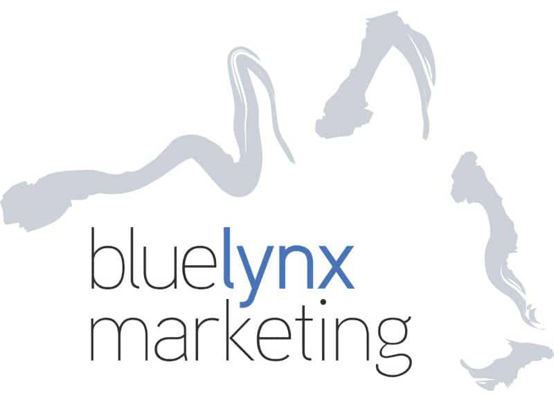 Tampa Internet Marketing Agency - Blue Lynx Marketing